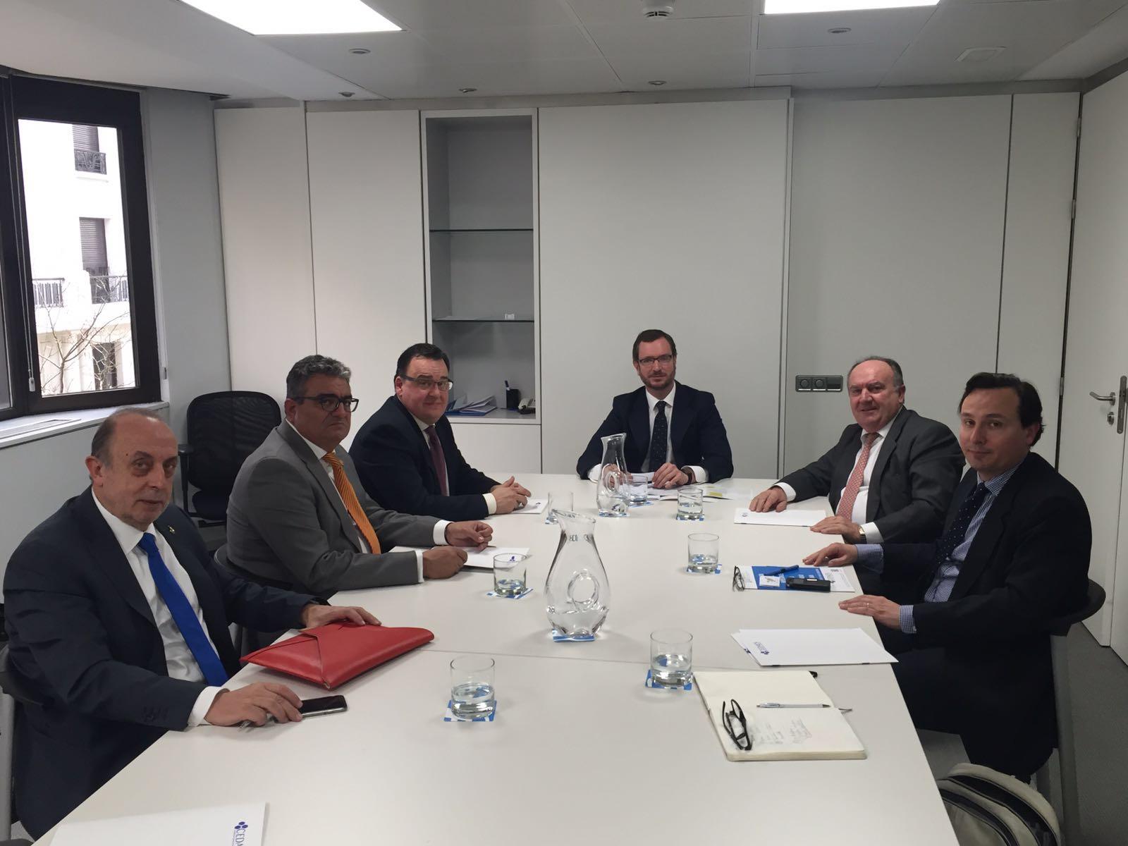 CEDAES se reúne con Javier Maroto, Vicesecretario General de Acción Social del Partido Popular.